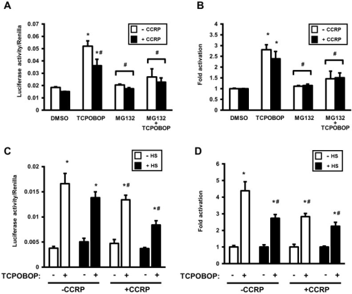 Thermal stress attenuates TCPOBOP-induced CAR transcriptional activation in HepG2 cells, similar to the effect of proteasomal inhibition.Luciferase activity of each sample was normalized to Renilla activity, and expressed as means ± SD of triplicate determinations. Shown is representative of three independent experiments. (A and B) Experiments were performed as described in Fig. 3, however empty vector or pcDNA3.1/V5-His-mCCRP was cotransfected with pcDNA3.1/V5-His-mCAR, -1.8-kb-luc, and phRL-tk (as normalization control). After transfection, cells were treated for 24 hr with DMSO (0.1% v/v), TCPOBOP (250 nM dissolved in 0.1% DMSO, final concentrations), MG132 (5 µM in 0.1% DMSO, final concentrations), or MG132 plus TCPOBOP, after which cells were harvested and luciferase activity measured. For fold-change determinations (B), each group was normalized to its corresponding DMSO-treated control (set as 1). Statistics are based on one-way ANOVA with post-hoc Tukey multiple comparisons test. *Significantly different (p<0.0001) compared to DMSO; and #significantly different (p<0.002) compared to TCPOPOP without CCRP overexpression. (C and D) Experiments and data analysis were performed as in A and B, with an incubation step at 42°C for 1 hr for heat-shock-designated cells performed prior to 24 hr treatment with DMSO (0.1% v/v) or TCPOBOP (250 nM in 0.1% DMSO, final concentrations). For fold-change determinations (D), each group was normalized to its corresponding DMSO-treated control (set as 1). Statistics are based on one-way ANOVA with post-hoc Tukey multiple comparisons test. *Significantly different (p<0.0001) compared to corresponding DMSO control treatment; #significantly different (p<0.001) to TCPOPOP alone (without both CCRP overexpression and heat shock).