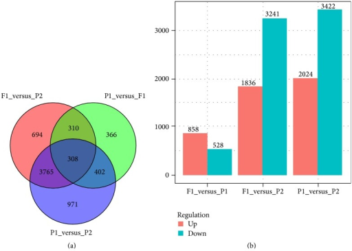 Total numbers of differentially expressed genes between P1, P2, and F1 by Venn diagram analyses (a) and statistics of up- or downregulated genes (b).