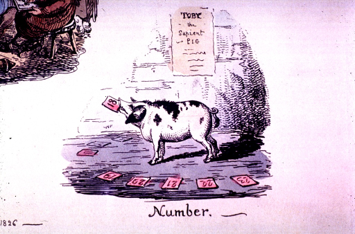 <p>The number 18 is in the mouth of Toby the sapient pig.</p>
