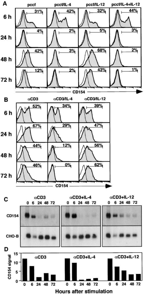 Cytokines control the second phase of CD154 expression. (A) Purified naive AND T cells were stimulated with peptide-bearing CH12 cells in the presence of the indicated cytokines. Cells were removed from culture at the times indicated and CD154 expression on Thy-1+ T cells was analyzed by flow cytometry. Open histograms represent control staining, whereas shaded histograms represent CD154 expression. (B) Purified naive AND T cells were cultured with plate-bound anti-CD3 in the presence of the indicated cytokines. Cells were removed from culture at the times indicated and CD154 expression was analyzed by flow cytometry. Open histograms represent control staining, whereas shaded histograms represent CD154 expression. (C) RNA was purified from AND T cells that had been stimulated by plate-bound anti-CD3 alone or with IL-4 or IL-12. 5 μg of purified total RNA was separated on a Northern blot, which was probed with the cDNA for CD154 and with the cDNA for a mitochondrial enzyme, CHO-B, as a loading control. (D) The amount of CD154 probe bound to the Northern blot was quantitated using a BioRad Molecular Imager FX PhosphorImager. The quantity shown represents the relative signal within the specific band minus the signal in an equivalent area adjacent to the specific band.