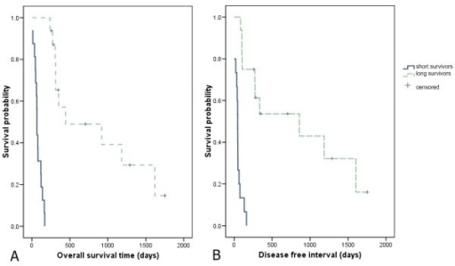 Kaplan-Meier survival analysis comparing long survivors (LS) and short survivors (SS) of dogs with OS. (A) Survival time (ST) and (B) disease free interval (DFI) Kaplan-Meier product limit estimate revealed differences in ST with significance of P < 0.0001 (log rank test of 36.58) and DFI with P < 0.0001 (log rank test of 28.35).