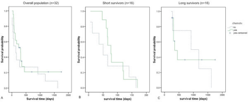 Kaplan-Meier survival curves of dogs treated with and without postoperative chemotherapy. (A) Overall population (n = 32 dogs); (B) Among short survivors group (n = 16 dogs) and (C) long survivors (n = 16 dogs). Chemotherapy did not significantly prolong life in the overall population or the subpopulations.