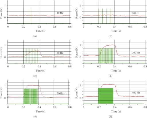 Illustration of muscle force measurement as a function of stimulation frequency in a representative rat. Individual muscle contractions to stimulation pulses at different frequencies are shown in red. Single stimulation pulses are indicated by green vertical lines. The muscle responded with single twitches until 25 Hz. At 50 Hz the muscle contractions were fused. With an increasing frequency of stimulation, the muscle responded with increased force, which reached a plateau at about 150 Hz.