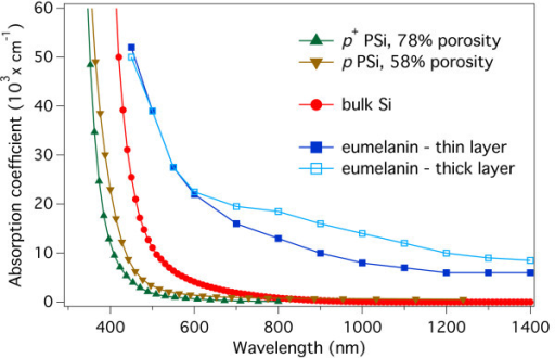 Literature absorption coefficients dispersion curves for PSi, Si and eumelanin. Comparison of the absorption coefficients dispersion curves reported in literature for several materials: eumelanin film, thin (80 nm, full squares), and thick (800 nm, empty squares), [16]; 58 % porosity p-type (inverted triangles) and 78 % p+-type (upright triangles) porous Si, [44]; and bulk Si (full circles) [46]. The plot shows how the absorption coefficient of eumelanin is significantly larger than that of PSi, becoming more than one order of magnitude larger for wavelengths longer than about 650 nm. It is worth noting that this is also valid with respect to the undoped bulk Si.