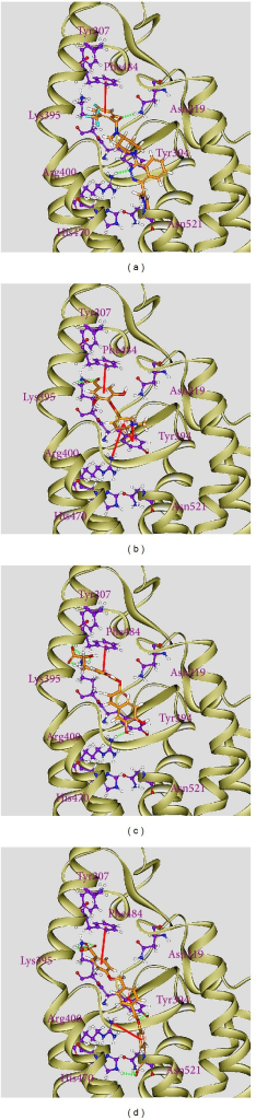 Docking pose of Smo protein complexes with (a) LY2940680, (b) precatorine, (c) labiatic acid, and (d) 2,2′-[benzene-1,4-diylbis(methanediyloxybenzene-4,1-diyl)]bis(oxoacetic acid).