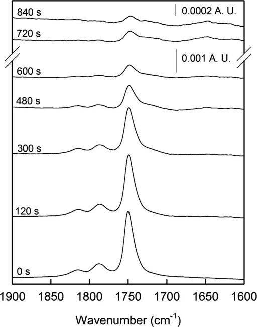 Infrared spectra of the DSP-based adlayer after differentimmersiontimes in 50 mM borate buffer (pH 8.50).