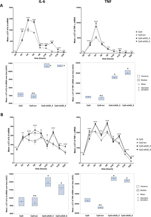 Expression of IL-6 and TNF mRNA in CpG/ CpG-construct treated BMDCs and JAWSII cells.IL-6 and TNF mean expression measured at 0–24h by qRT-PCR (∆∆CT normalized to β-2-microglobulin) in BMDCs (A) and JAWSII dendritic cell line (B); Lower panels show integrated results of all time points calculated as areas under curves (AUC) defined by 9 time points; The results from three technical replicates of one representative experiment are shown; n.s. indicates no significant differences, * indicates p<0.05, ** indicates p<0.01, *** indicates p<0.001 compared to CpG treated cells.