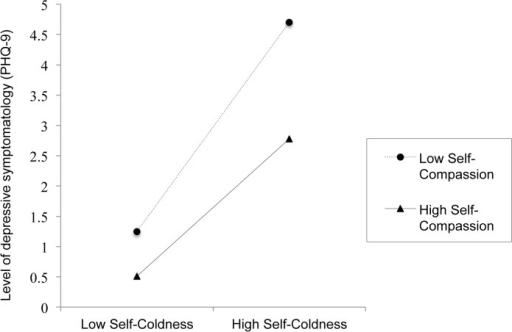 Illustration of the moderation of the relationship between self-coldness and depression by self-compassion (n = 2,404).