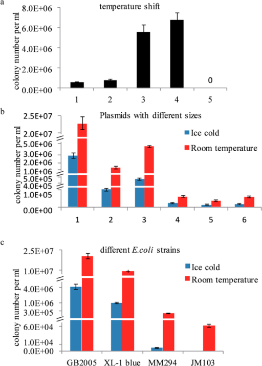Transformation efficiency of competent cells.(a) Effect of temperature, E. coli GB2005 cells transformed by ~0.1 μg of pGB-amp-Ptet-plu1880 (27.8 kb) were plated on Amp plates. 1, the normal ice-cold method for preparing electrocompetent cells; 2, as for 1 but the cells were kept on ice for 15 min before electroporation; 3, as for 1 but the cells were placed at room temperature (RT) for 15min before electroporation; all cuvettes were used at RT; 4, every step was done at RT; 5, no plasmid DNA. (b) RT prepared cells were transformed with different plasmids. 1, pBR322 origin with ampicillin resistance (27.8 kb); 2, p15A origin with chloramphenicol resistant (54.7 kb); 3, p15A origin with ampicillin resistance (54.7 kb); 4, BAC with chloramphenicol resistant (>120 kb); 5, BAC with kanamycin resistant (91.7 kb); 6, BAC with ampicillin resistant (91.7 kb). (c) Different E. coli strains tested for electroporation transformation. Cells were transformed by 0.1 μg of pGB-amp-Ptet-plu1880 and plated on Amp plates. Error bars, SD; n = 3.