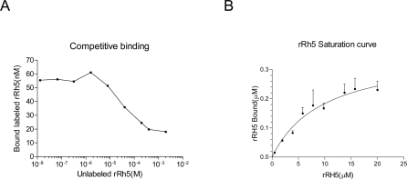 Characterization of binding kinetics of rRH5 and RBC.A Competition of binding to RBCs of rhodamine-labeled against unlabeled rRH5. Binding is inhibited by unlabeled rRH5 in a dose-dependent manner. The inhibition curve derived from scans of two independent assays shows that rRH5 competes against the binding of labeled rRH5 at an IC50 of ca. 5×10−5 M. B Binding profile of rRH5 to resealed RBC ghosts. The curve is the calculated least-squares best fit for a population of identical independent binding sites, giving Kd = 1.25 (±3)×10−5 M, with a saturation level (number of sites) at 0.42 µM.