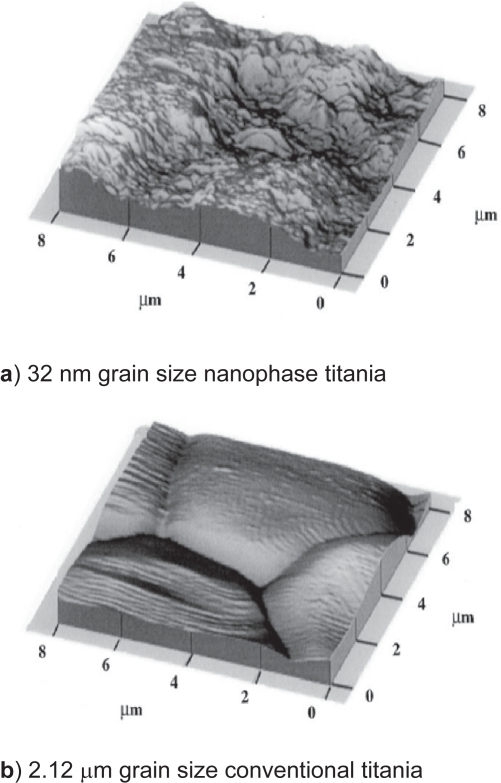 Atomic force microscopy (AFM) micrographs of nanophase and conventional titania. AFM data provided evidence that nanophase titania was considerably more rough at the nanoscale than conventional titania (specifically, AFM root-mean-square roughness values were 32 nm and 16 nm for nanophase and conventional titania, respectively).