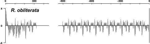 Kyte-Doolittle hydropathy plot of the N- and C-terminal regions of R. obliterata H-fibroin. The first 150 and last 75 residues make up the nonrepetitive ends, while the major central part is composed of repeats