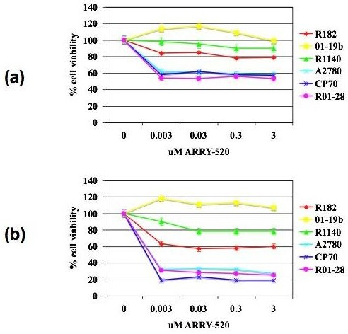 ARRY-520 significantly decreases the number of viable Type II EOC cells. The viability (in percentage, normalized to untreated cells) of EOC cells after treatment with increasing concentrations of ARRY-520 for (a) 24 and (b) 48 hours. Data were compiled from at least three independent experiments, each done in triplicate. Type I cells – R182, 01–19b, R1140; Type II cells – A2780, CP70, 01–28; dotted line corresponds to 50% viability.