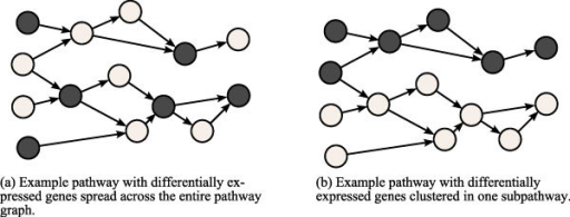 Example of density analysis on biological pathways. Two example pathways with differentially expressed genes appearing in different configurations. A pathway with differentially expressed genes appearing tightly-clustered in one portion of the graph is more significant than a pathway in which the differentially expressed genes appear spread out.