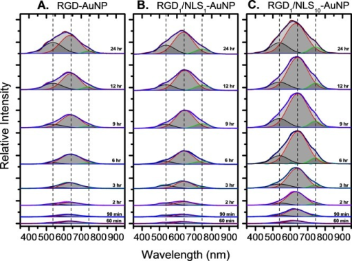Real-time Rayleighscattering spectra of AuNP uptake and localizationwithin living cells for (A) RGD-AuNPs, (B) RGD1/NLS1-AuNPs, and (C) RGD1/NLS10-AuNPs. Thedeconvoluted peaks show the plasmonic scattering bands of single nanoparticles(538 nm), small AuNP clusters (641 nm), and large AuNP clusters (745nm) and the center of the Gaussian fits are denoted by dashed lines.