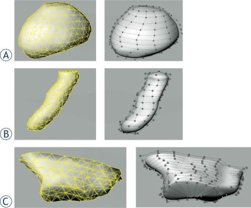 Nonuniform rational B-spline (NURBS) representation of pelvic organs converted from polygon meshes. Upper: polygon surfaces represented by triangular meshes. Lower: corresponding NURBS surfaces with control points.(A) Bladder;(B) Rectum;(C) Intestine.