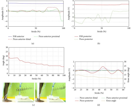 FSR and piezoelectric sensors output during stair ascent: (a) FSR anterior, piezo anterior distal, and piezo anterior proximal sites, (b) FSR and piezoelectric sensors at posterior sites, (c) knee angle during stride, and (d) piezoelectric sensors with the knee angle at a region from 20% to 60%.