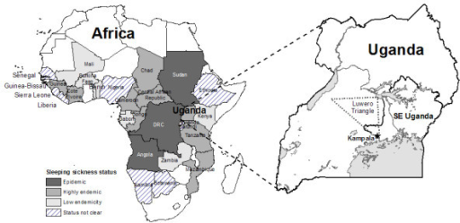 Distribution of sleeping sickness in Africa and map of Openi