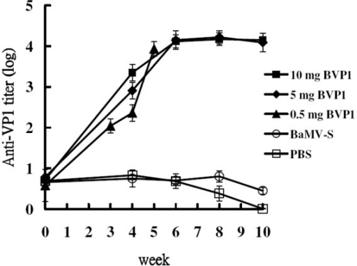 Serum titers of swine immunized with chimeric virus BVP1. Groups of swine were immunized with 0.5 mg (▲), 5 mg (◆), 10 mg (■) of chimeric virus BVP1 or 5 mg of wild-type virus BaMV-S (○) or PBS (□). Swine sera were collected at the indicated time after immunization. Anti-VP1 titers were determined by ELISA. The animals inoculated with 0.5 mg BVP1 were boosted with the same amount of BVP1 four weeks after priming while those inoculated with 5 mg and 10 mg of BVP1 were boosted six weeks after priming.