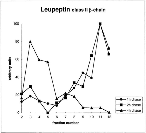 Selective redistribution of newly synthesized MHC  class II molecules to lysosomes in leupeptin-treated cells analyzed by Percoll gradient centrifugation. (A) Leupeptin does not  affect the density of compartments containing β-hexosaminidase  and Tfn-HRP, markers of lysosomes and endosomes, respectively. After a 3-h incubation with or without 2 mM leupeptin,  cells were permitted to internalize Tfn coupled to HRP for 30  min at 37°C (in the presence or absence of leupeptin) before homogenization and fractionation on Percoll density gradients. The  β-hexosaminidase and HRP activities were determined in individual fractions. High density fractions (bottom of the gradient)  contained most of the β-hexosaminidase activity, while Tfn-HRP  was mainly present in low density fractions. No difference was  observed between leupeptin-treated and control cells. (B) Redistribution of newly synthesized MHC class II molecules into high  density fractions in leupeptin-treated cells. After a pulse of  [35S]methionine and a 1-, 2-, or 4-h chase in the absence (left) or  presence (right) of leupeptin, I-Ab–expressing A20 cells were  fractionated on Percoll gradients. The membranes in each of the  gradient fractions were pelleted by centrifugation, lysed in Triton  X-100, and then immunoprecipitated using mAbs to I-Ab (Y3P).  The samples were analyzed by SDS-PAGE, and bands corresponding to class II β chains were quantified by phosphorimaging  and optical densitometry. Ii-p10 intensity was also quantified after the 4-h chase in the presence of leupeptin (bottom left). Leupeptin caused a strong redistribution of class II into high density fractions. The majority of Ii-p10 was also found in lysosome-containing fractions. As expected, Ii-p10 was barely detectable in control cells  and thus was not shown.