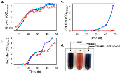 Growth and antibiotic synthesis kinetics of M145 and YSK4425. (a) Growth measured using optical density at 450 nm. (b) and (c) Spectrophotometric measurements of antibiotic titers for undecylprodigiosin and actinorhodin. Time profiles for M145 (○, solid blue line) and YSK4425 (△, dashed red line) are shown. The curves represent data from one of two reproducible experiments. (d) Photograph shows the dramatic difference in antibiotic synthesis between the M145 and YSK4425. Pictures are culture samples taken ~4 days after inoculation, indicating that the observed absence of actinorhodin synthesis was a genuine abolishment rather than a delay in synthesis.