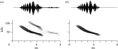 (a,b) Isolation of first harmonic. The echolocation calls were broadband FM sweeps with a prominent second harmonic. The first harmonic was isolated by harmonic filtering, which removed the interference in time signals and spectra that was due to the frequency overlap between first and second harmonic.