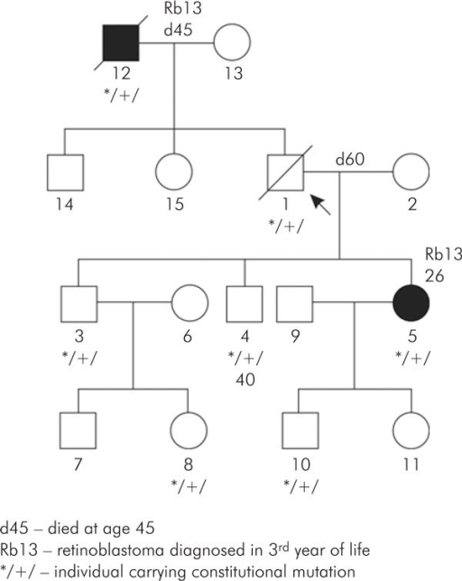 Pedigree of family with low penetrance Rb1 gene mutation.