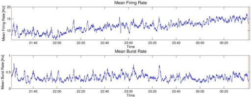 Firing and bursting rates in the natural habitat.Firing (top) and bursting rates (bottom) of the spike activity of the omega-neuron from 21.20 hrs to 0.40 hrs at night in the natural habitat. The fluctuation in both rates is high, but firing and burst rates are correlated with a correlation coefficient of . The mean firing rate over the entire night is 11.5 Hz, and the mean bursting rate is 0.33 Hz. (Bin size: 1 sec for firing rate, 100 sec for bursting rate).