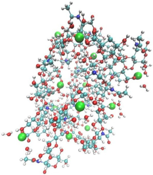 Model hyaluronate unit. Calcium(II) ions are depicted as Van der Waals spheres. Key to atom colours: white-hydrogen, red-oxygen, cyan-carbon, blue-nitrogen, green-calcium(II) ion.