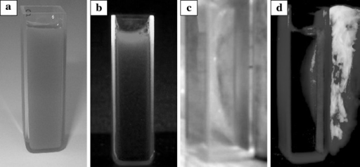 Luminescent and magnetic properties of bifunctional nanocomposite (20 % Eu3+), before (a, b) and after (c, d) magnet capture. Shown samples were irradiated by UV lamp (λ = 254 nm)