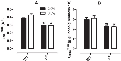 Specific growth rate and specific glucose consumption are decreased in ρ0S. cerevisiae but unaltered by glucose levels.Specific growth rates in glucose (μglumax, Panel A) and specific glucose consumption (rglumax, Panel B) of WT and ρ0S. cerevisiae (as indicated) were calculated as described in Materials and Methods. *p <0.05 vs. WT (unpaired Student's t test).