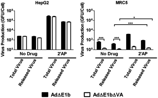 Treatment of HepG2 and MRC5 cells with 2.5 mM 2′AP inhibited AdΔE1b and AdΔE1bΔVA release.Cells were infected with either AdΔE1b or AdΔE1bΔVA at MOI of 1 GFU/cell for 1 hour prior to treatment with medium containing no drug or 2.5 mM 2′AP. Four days following infection, infected cells combined with the media (total virus) or the media alone (released virus) were harvested. Virus yields were determined by titration in Hep3B cells. Error bars correspond to +/−SD of quadruplicates (*p<0.05, ***p<0.001, one-way ANOVA).