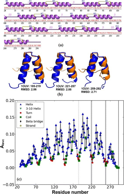 Predicted Ankyrin repeat protein 1OUV (chain A). (a) Secondary structure representation from PDBsum (b) Structural alignment of predicted ANK repeat copy (shown in blue colour) with a repeat copy of designed ANK protein 1N0R (shown in orange) (c)Alevc plot with dotted and solid lines showing the start and end of predicted ANK boundaries.