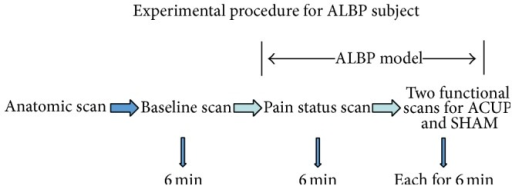 The experimental paradigm for the ALBP subjects included five steps.