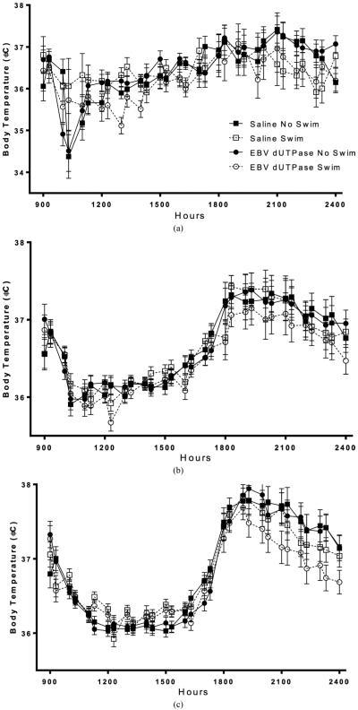 On day one, body temperature (±SEM) was reduced in mice that swam compared to mice that did not swim (a), significance marked on average body temperature graph for day 1 (d). Body temperature averaged from days 1 - 7 was not altered by swimming of EBV dUTPase injections (b). EBV dUTPase injections decreased body temperature compared to saline injections and swimming decreased body temperature compared to mice that did not swim averaged over all 14 days ((c), (e)). Each graph represents average body temperature (±SEM), across multiple days (for (b) and (c)), in the hours following injection. Asterisks (*) indicates significant main effect differences in repeated measures ANOVA, p < 0.05.