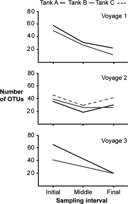 Number of OTUs (total counts) recovered from initial, middle, and final samples. Three different ballast tanks were sampled: A (black line), B (gray line), and C (dashed line). Voyage 3 was sampled only at beginning and end.