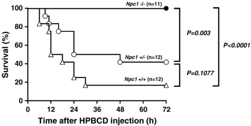 Effect of HPBCD injection on survival rate of Npc1 mutant mice.Npc1+/+ (n = 12), Npc1+/− (n = 12) and Npc1−/− (n = 11) mice were administered HPBCD (20,000 mg/kg) subcutaneously and monitored for 72 h.