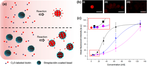 Bead-based streptavidin–biotin binding test.(a) Schematic of the collision and binding phenomena between streptavidin-coated beads and biotin molecules depending on the number of beads; (b) representative fluorescence images with (i) single, (ii) 12.4 ± 3.6, and (iii) 79.4 ± 33.0 beads in a dispensed droplet; (c) MFI of single beads at different biotin molecule concentrations after reactions with different numbers of streptavidin beads (square, upper triangle, and lower triangle indicate single, 12.4 ± 3.6, and 79.4 ± 33.0 beads, respectively). All scale bars are 50 μm.