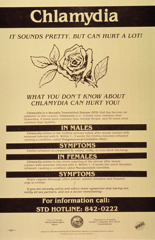<p>Yellow and black poster.  Title at top of poster.  Visual image is an illustration of a rose.  Caption below illustration.  Most of poster dominated by text explaining symptoms of chlamydia in males and females and what to do when symptoms are recognized.  Publisher information at bottom of poster.</p>