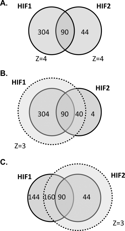 Intersection between HIF-1α- and HIF-2α-binding gene loci. A, gene loci that bound either HIF-1α or HIF-2α or both isoforms with a Z-score >4. B, defining HIF-1α capture with a Z-score of 3 encompasses almost all HIF-2α binding loci. C, defining HIF-2α capture with a Z-score of 3 excludes almost one-third of HIF-1α binding loci.
