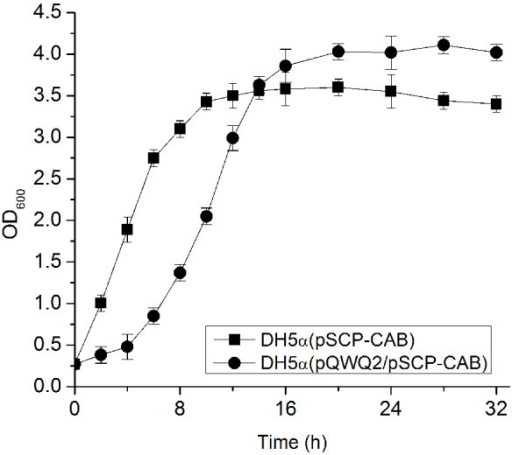 Cell growth comparison of E. coli DH5α (pSCP-CAB) and E. coli DH5α (pQWQ2/pSCP-CAB). Growth was measured in LB medium with 20 g/L glucose without pH control.