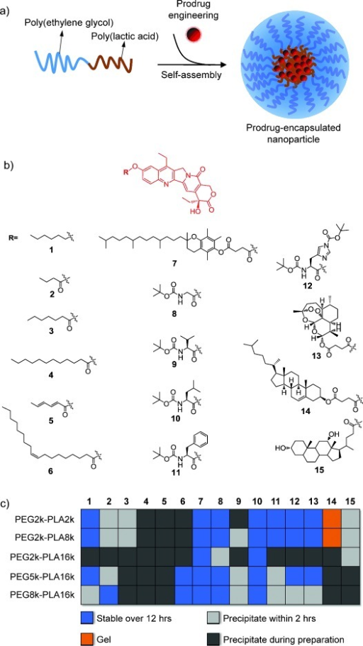 a) Prodrugs were engineered for combination with amphiphilic copolymer-based nanoparticulate drug delivery platforms. b) Structures of a small library of SN-38 prodrugs. A variety of hydrophobic moieties were conjugated to the 10-hydroxy group through the formation of phenyl ether (1) or ester (2–15) bonds. c) Assessment of the stability of the prodrug-encapsulated, self-assembled PEG-PLA nanoparticles (PEG-PLA/prodrug weight ratios fixed at 20:1).