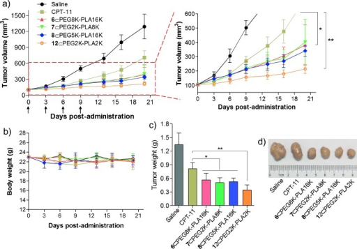 In vivo antitumor efficacy of prodrug-loaded NPs against HCT-116 colorectal xenograft model. a) Tumor growth curve of different groups. Mice received four i.v. injections of 10 mg kg−1 (SN-38 equivalent dose) on days 0, 3, 6, and 9. Each point represents the mean of tumor size±standard deviation (n=7). *P<0.05; **P<0.01. b) Body weights (mean±standard deviation). c) Tumor masses of drug-treated groups 20 days after treatment. d) Representative images of HCT-116 tumors of the mice after treatment with saline, CPT-11, or prodrug-loaded NPs at day 20.