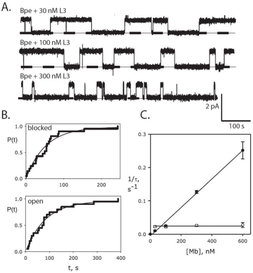Bimolecular kinetics of monobody block(a) Single Bpe recordings with indicated concentrations of monobody L3 in cis chamber, with conditions as in Fig 2. (b) Cumulative distributions of blocked and open dwell times (n=20 for each) for a single Bpe channel in the presence of 30 nM L3 monobody. Solid lines show single-exponential fits. (c) Dependence of blocked (open points) and open (closed points) time constants on monobody concentration [Mb], for L3 block of Bpe. Each point represents mean ± s.e.m. time constant from 3-6 separate bilayers. Solid lines show fits to Eq. 1a and Eq. 1b for open and blocked intervals, respectively, with τB= 41 s (koff=.025 s-1), τO=77 s (kon = 4.3 × 105 s-1M-1), KD = 58 nM.