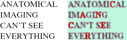 An illustration of how the detection of small tumours by PET is not determined by spatial resolution. The text on the left is displayed with high spatial resolution but is unable to detect the hidden message 'CANCER'. Even though the text on the right is blurred (low resolution), the hidden message is revealed by labelling the letters that are functionally different (i.e. they carry the hidden message).
