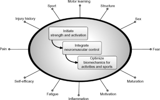Theoretical framework for hip-focused neuromuscular exercises to modify dynamic lower extremity valgus.Notes: Theoretical framework of the main steps to consider when initiating hip-focused neuromuscular exercises to modify dynamic lower extremity valgus. The spokes represent a non-exhaustive list of common factors that likely influence the relative success of a program.