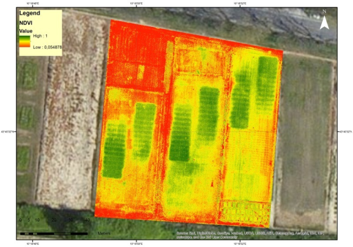 The RGB image of the turfgrass fields acquired by Tetracam ADCMicro mounted on the unmanned aerial vehicle.
