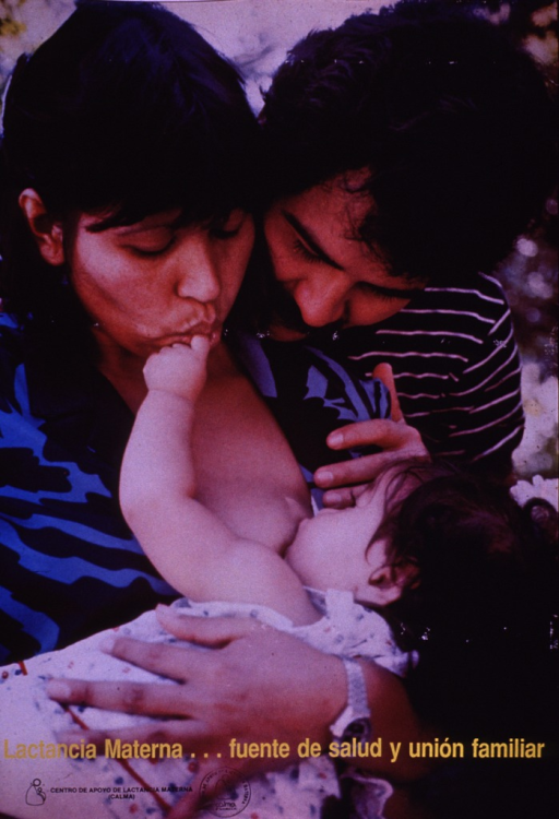 <p>Multicolor poster with yellow and black lettering.  Entire poster is a color photo reproduction featuring a mother breastfeeding her baby as the father looks on.  Title superimposed near bottom of poster.  Publisher information in lower left corner.</p>