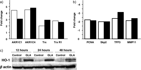 Gene induction in the presence of GLA for 24 h using quantitative real-time RT-PCR. (a) up-regulated genes (b) down-regulated genes. White bars, cDNA microarray fold change; Black bars, real time RT-PCR fold change. (c) GLA induced HO-1 protein in Huh7 cells. Huh7 cells were untreated (control) or with 250 µM GLA (GLA) for 12, 24 and 48 h. HO-1 and β-actin proteins were detected by western blotting.