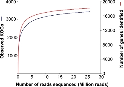 Collector's curve of gene richness as a function of reads analyzed.